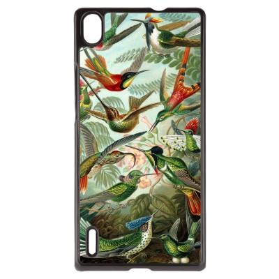 huawei-ascend-p7-cover - Haeckel Trochilidae