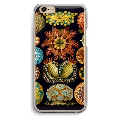 iphone-6-6s-transparent-case - Haeckel Ascidiae