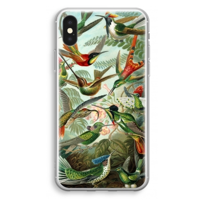 coque-transparente-iphone-xs - Haeckel Trochilidae