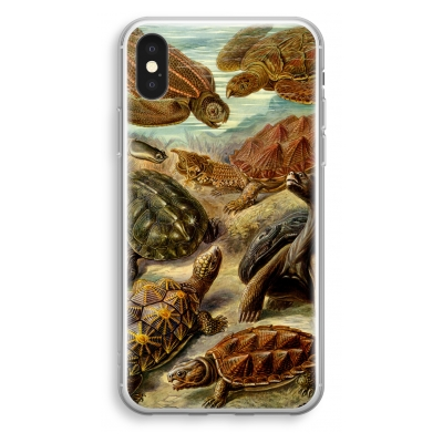 coque-transparente-iphone-xs - Haeckel Chelonia