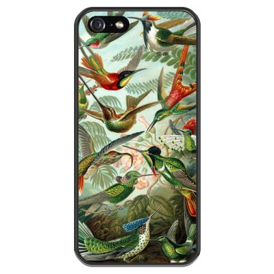 coque-iphone-5-5s-silicone - Haeckel Trochilidae