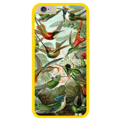 iphone-6-6s-matte-case - Haeckel Trochilidae