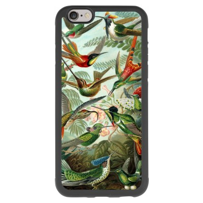coque-iphone-6-6s-silicone - Haeckel Trochilidae