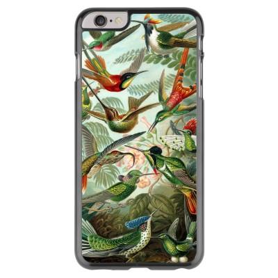 iphone-6-plus-6s-plus-case - Haeckel Trochilidae